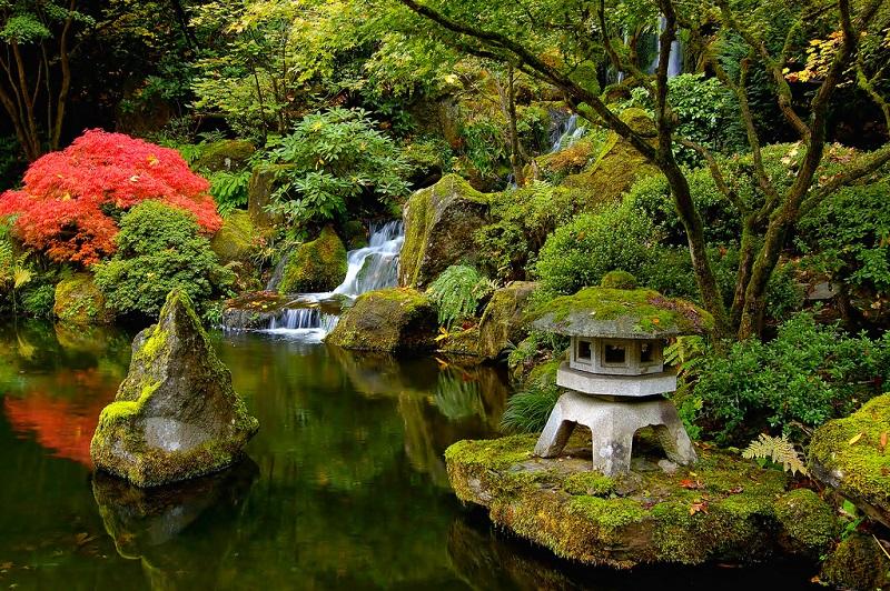 Японского сада в портленде орегон